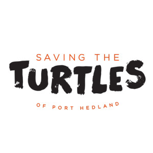 turtles_feature2